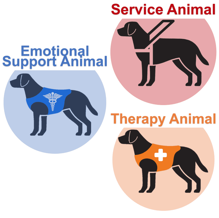 Service Support Therapy Dog Animal Icon